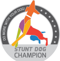 SDchampion-medal